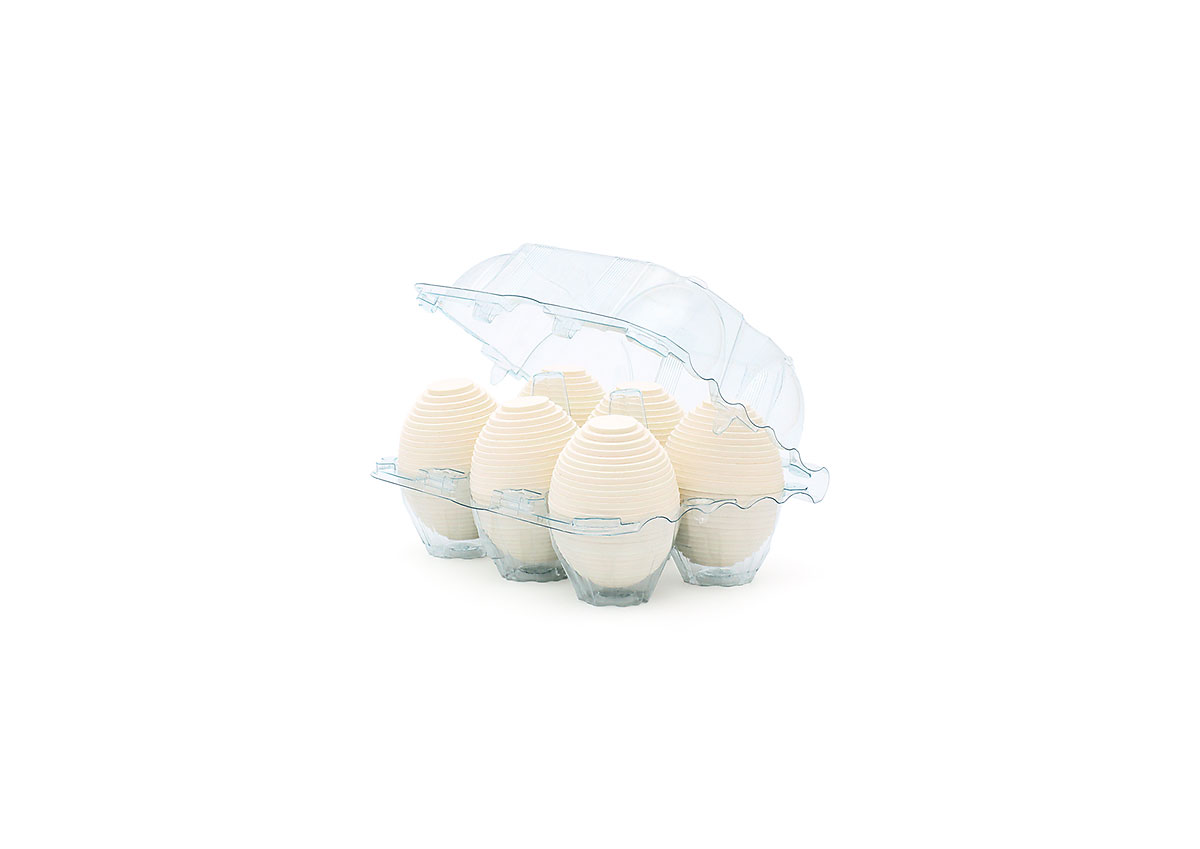 Fine art print of six layered white cardboard eggs in a clear plastic six-egg carton
